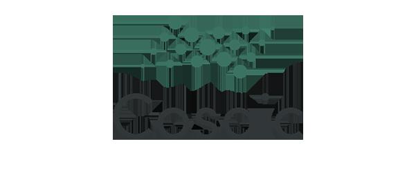 Cosaic